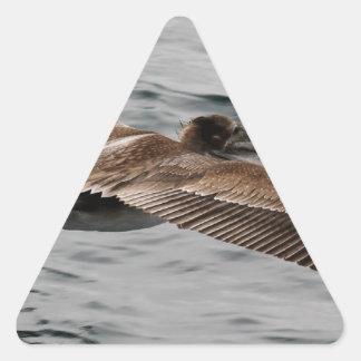 Wild Bird Looking for Lunch Triangle Sticker