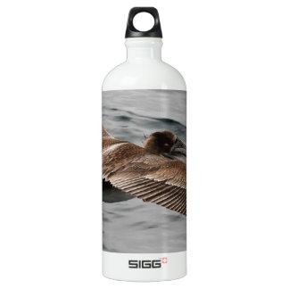 Wild Bird Looking for Lunch Water Bottle