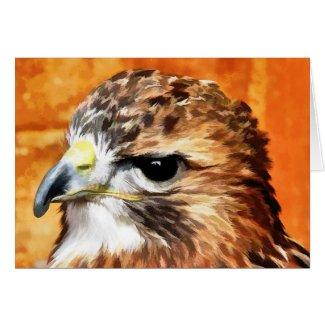 WILD BIRDS HAWK UK card