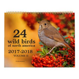 Wild Birds of North America Calendar