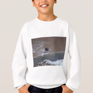 wild birds (Oklahoma) Sweatshirt