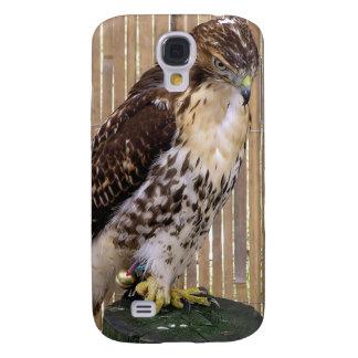 Wild Birds: Red-Tailed Hawk Galaxy S4 Cases