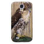 Wild Birds: Red-Tailed Hawk Galaxy S4 Covers