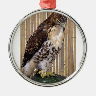 Wild Birds: Red-Tailed Hawk Metal Ornament