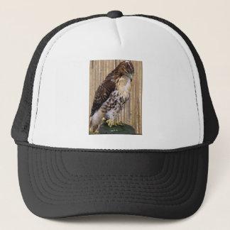 Wild Birds: Red-Tailed Hawk Trucker Hat