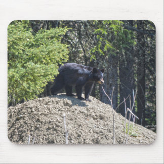 Wild Black Bear Cub & Mud Hill Wildlife Photo Gift Mouse Pad