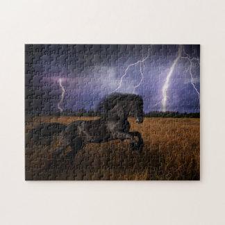 Wild Black Horse Puzzle