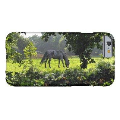 Wild Black New Forest Pony - Grazing Horse U.K. Barely There iPhone 6 Case