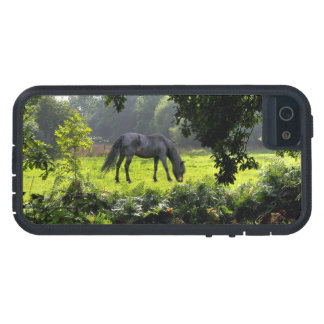 Wild Black New Forest Pony - Grazing Horse U.K. Case For iPhone SE/5/5s
