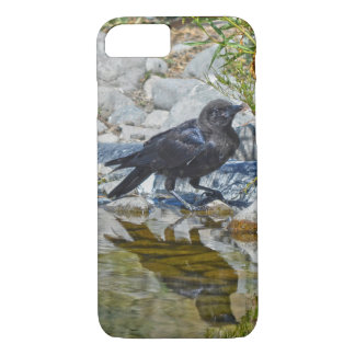 Wild Black Raven Reflected in Pool iPhone 7 Case