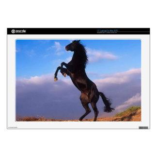 """Wild Black Stallion Rearing Horse 17"""" Laptop Decal"""