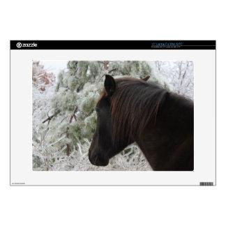 Wild Black Stallion Spanish Mustang Horse Decals For Laptops