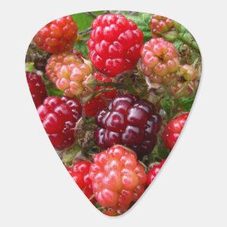 Wild Blackberries Guitar Pick