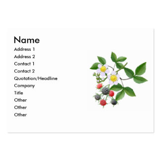 Wild Blackberries Profile Card Large Business Cards (Pack Of 100)