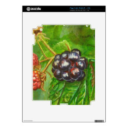 Wild Blackberries ripening in Summer Decal For The iPad 2