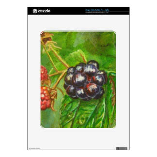 Wild Blackberries ripening in Summer Decals For The iPad