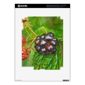 Wild Blackberries ripening in Summer iPad 3 Skin