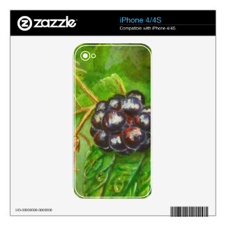 Wild Blackberries ripening in Summer Skin For The iPhone 4S