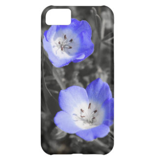 Wild Blue iPhone 5C Cases