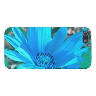 Wild Blue Sunflower iPhone 5 case