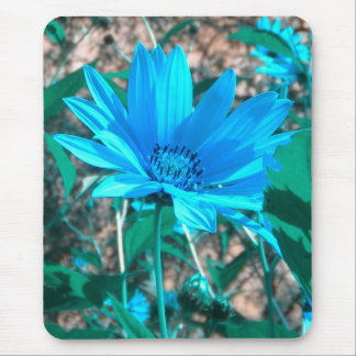 Wild Blue Sunflower Mousepad