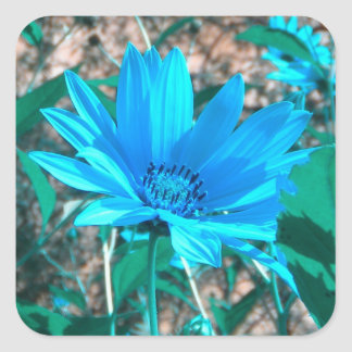 Wild Blue Sunflower Stickers