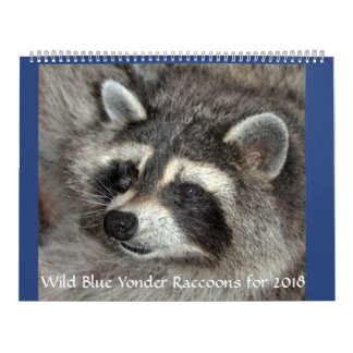 Wild Blue Yonder Raccoons of 2018 Calendar