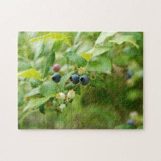 Wild Blueberries Puzzle
