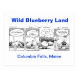 Wild Blueberry Land Postcards