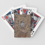 Wild bluebird in woods playing cards
