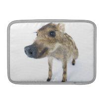 Wild boar MacBook sleeve