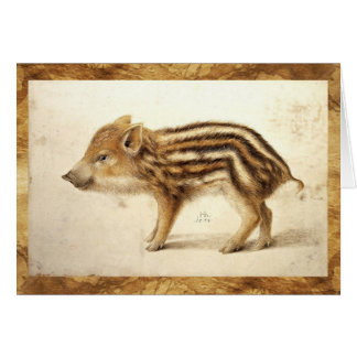 WILD BOAR PIGLET Animal Drawing Card