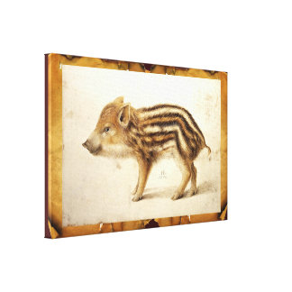 WILD BOAR PIGLET STRETCHED CANVAS PRINT