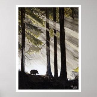 Wild Boar Print