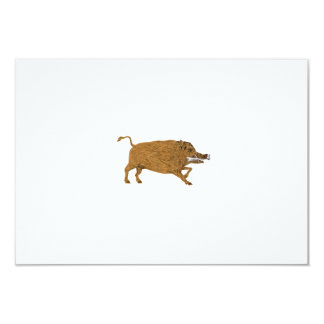 Wild Boar Razorback Bone In Mouth Walking Retro Card