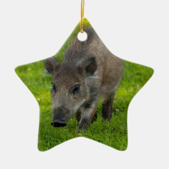 wild boar search for love ceramic ornament
