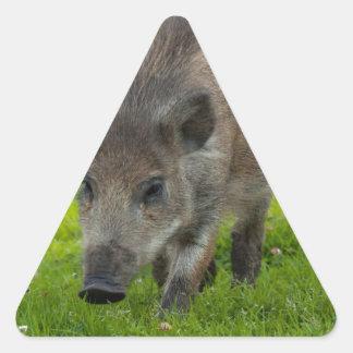 wild boar search for love triangle sticker