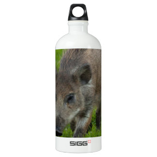 wild boar search for love water bottle