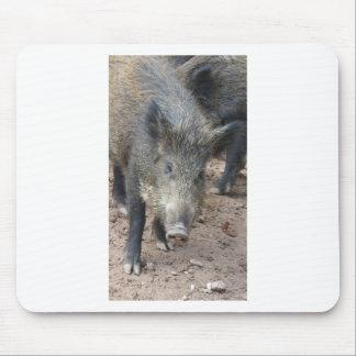 Wild Boar Sierra Espuna Mouse Pad