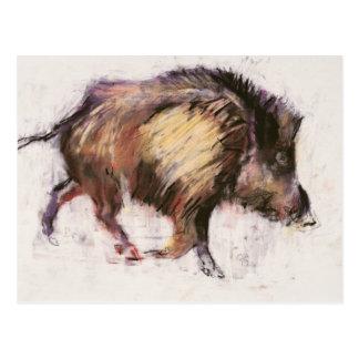 Wild Boar Trotting 1999 Postcard