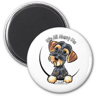Wild Boar Wirehaired Dachshund Its All About Me 2 Inch Round Magnet