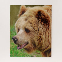 Wild Brown Bears. Jigsaw Puzzle