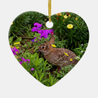 Wild Brown Rabbit Photography Ceramic Ornament