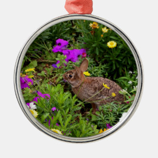 Wild Brown Rabbit Photography Metal Ornament
