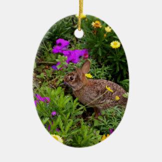 Wild Brown Rabbit Photography Ornament