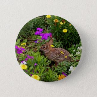 Wild Brown Rabbit Photography Pinback Button