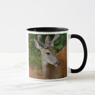 Wild Buck Deer Mug