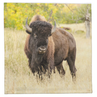 Wild Buffalo in a Field Napkin
