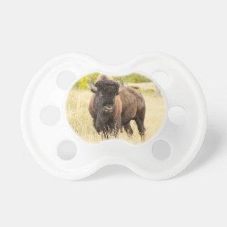 Wild Buffalo in a Field Pacifier