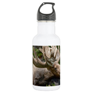 Wild Bull Moose Stainless Steel Water Bottle